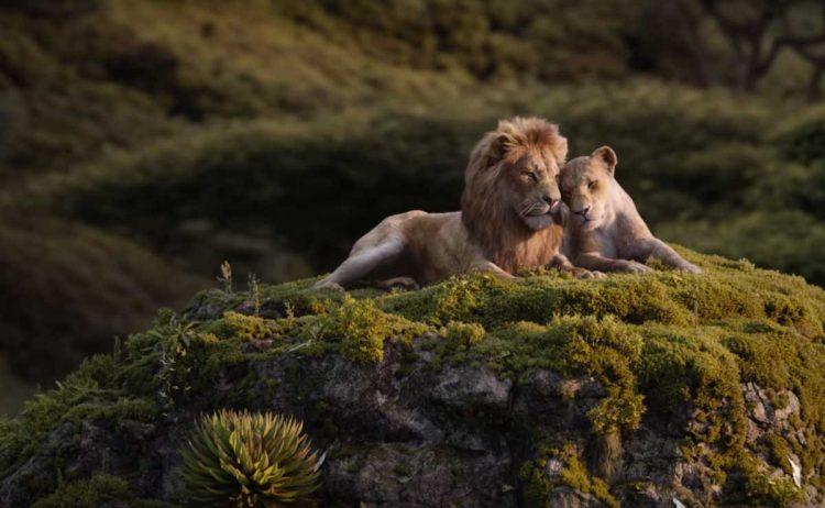 Cuplikan adegan film 'The Lion King'   Foto: Tangkapan layar youtube Walt Disney Studios